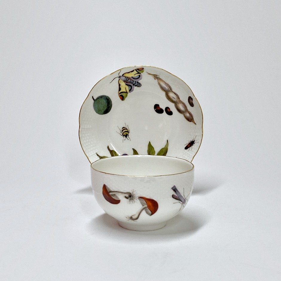 Meissen - Cup and saucer decorated with vegetables and insects - Eighteenth century - circa 1745-1750