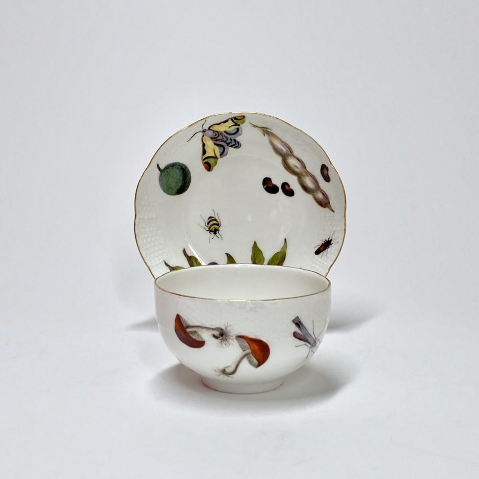 Meissen - Tasse et sa soucoupe à décor de légumes et insectes - XVIIIe siècle - vers 1745-1750